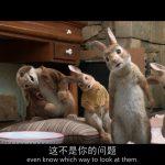 来源文章:2018年喜剧《比得兔/彼得兔》BD中英双字幕